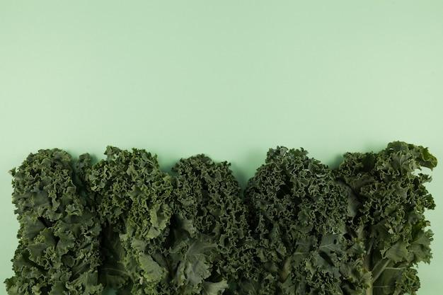 Organiczny Jarmuż (jarmuż Włoski, Jarmuż Toskański, Jarmuż Dinozaura, Lacinato) Na Delikatnym Zielonym Tle Premium Zdjęcia