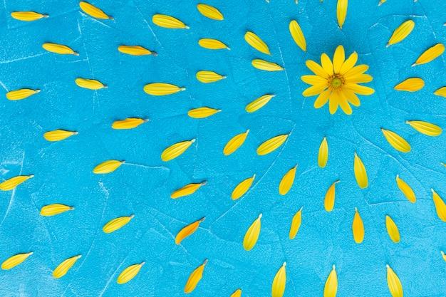 Oset ostryg hiszpański z kwiatowym otoczeniem Darmowe Zdjęcia