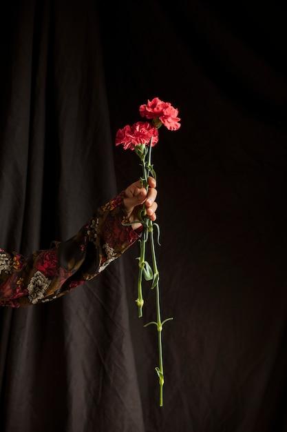 Osoba Posiadająca Czerwone Kwiaty Goździka Darmowe Zdjęcia