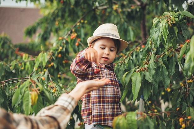 Ostrożny Chłopiec Kaukaski W Kapeluszu Podaje Wiśnie Swojej Matce Stojącej W Pobliżu Drzewa Premium Zdjęcia