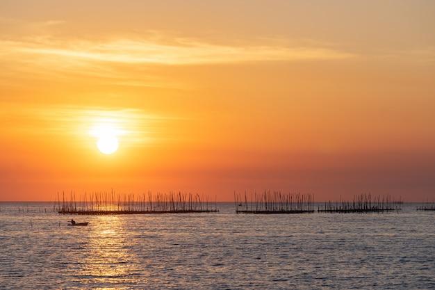 Ostrygi Gospodarstwo Rolne W Morzu I Pięknym Niebo Zmierzchu Tle Darmowe Zdjęcia