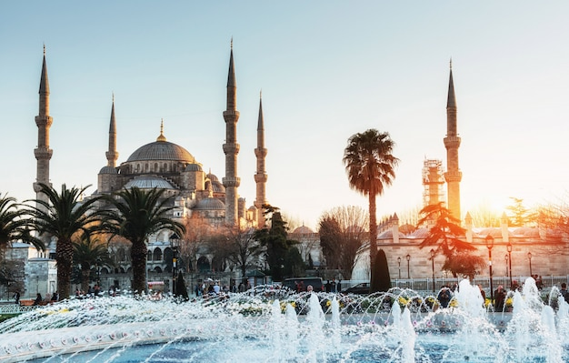 Oświetlony niebieski meczet sułtana ahmeda przed wschodem słońca, is Premium Zdjęcia