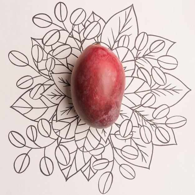 Owoc Mango Na Tle Kwiatów Konspektu Darmowe Zdjęcia