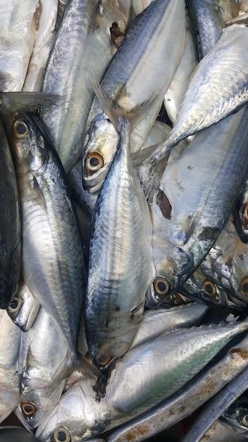 Owoce Morza W Sklepach Przydrożnych Na Rynku Premium Zdjęcia