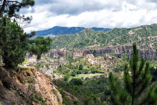Paisaje De Montañas Y Valle De Pinos Premium Zdjęcia