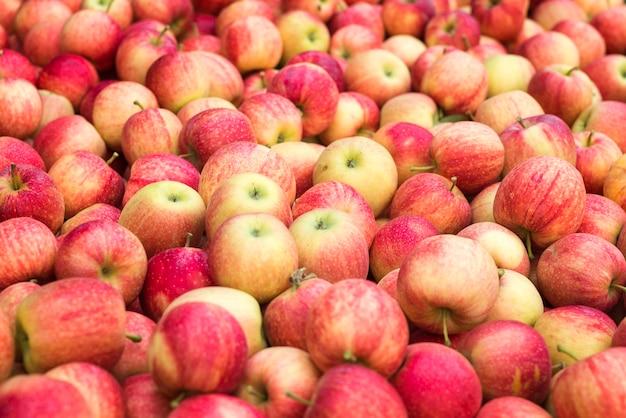 Pala świeżych Czerwonych Jabłek Darmowe Zdjęcia