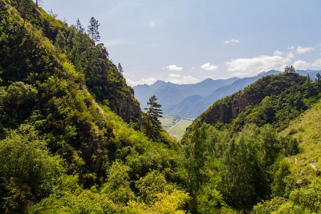 Panorama gór ałtaj Premium Zdjęcia