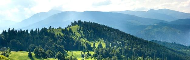 Panorama świezi zieleni wzgórza w karpackich górach w wiosna słonecznym dniu Premium Zdjęcia