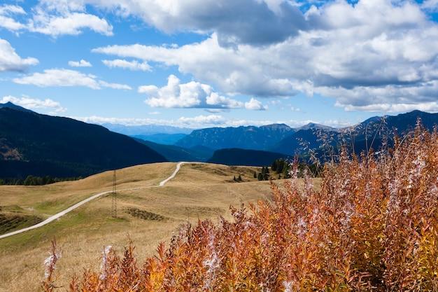 Panorama Z Włoskich Alp Z Widoku Dolomitów San Martino Di Castrozza Premium Zdjęcia