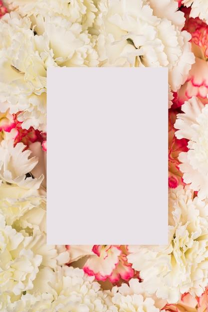 Papierowa Kopia Przestrzeń Na Białych Goździkach Darmowe Zdjęcia