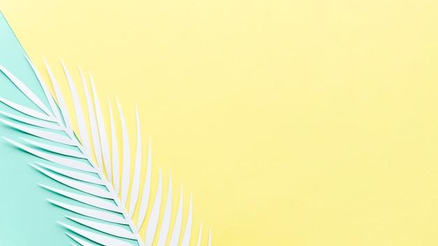 Papierowy liść palmowy na jaskrawym stole Darmowe Zdjęcia