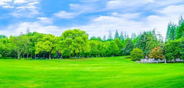 Parków gór refleksji górskiej dekoracji ogród Darmowe Zdjęcia