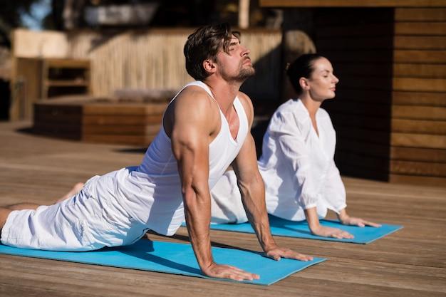 Pary spełniania joga przy safari wakacje Darmowe Zdjęcia