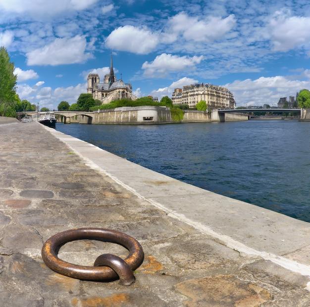 Paryż, Południowy Brzeg Sekwany Z Katedrą Notre-dame Na Wiosnę Premium Zdjęcia