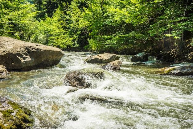 Pasmo górskie trialeti w gruzji Premium Zdjęcia
