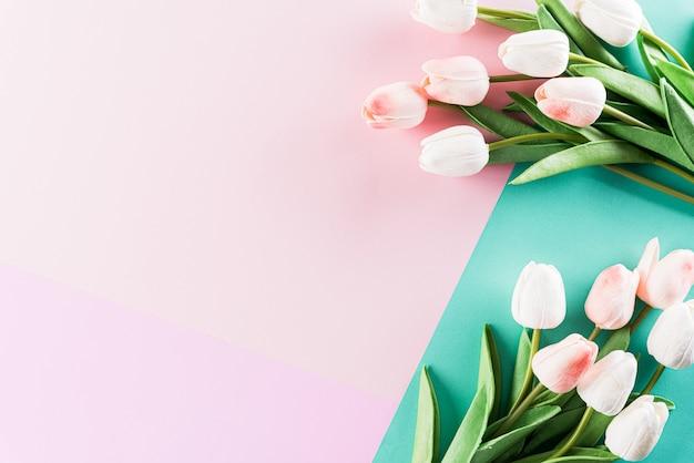 Pastelowe Kolory Tła Z Kwiatów Tulipanów Płasko świeckich Wzorów. Premium Zdjęcia