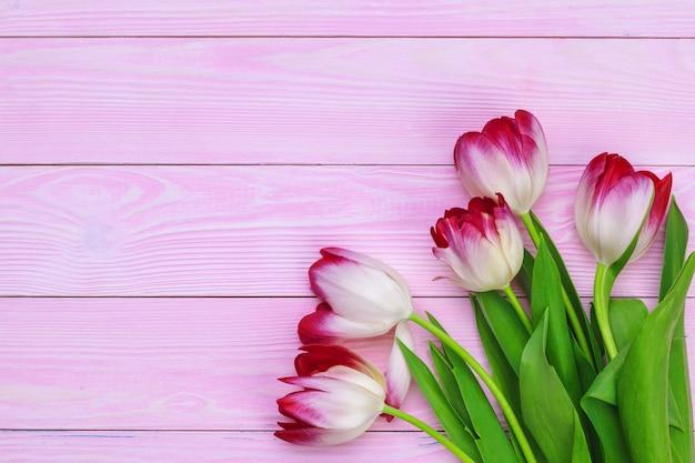 Pęczek świeżych tulipanów na pastelowym różu Premium Zdjęcia