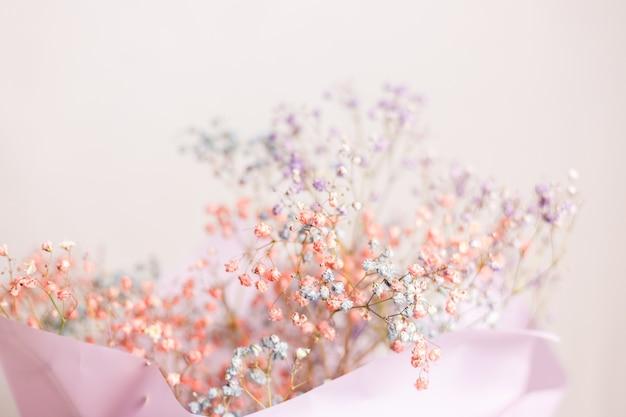 Piękna Dekoracja śliczne Małe Suszone Kolorowe Kwiaty, Tapeta. Darmowe Zdjęcia