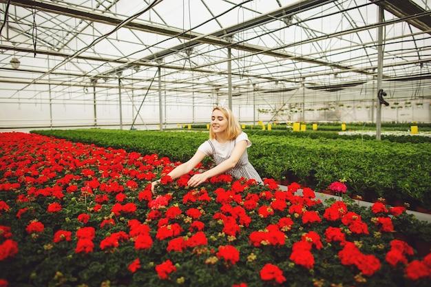 Piękna młoda uśmiechnięta dziewczyna, pracownik z kwiatami w szklarni Premium Zdjęcia