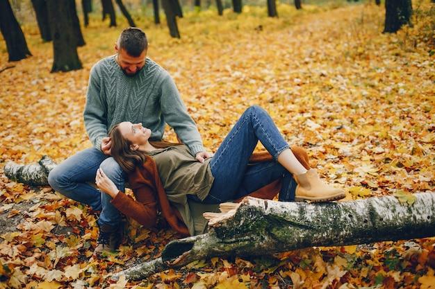 Piękna para spędzać czas w parku jesienią Darmowe Zdjęcia
