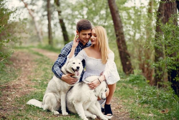 Piękna para w lesie latem z psami Darmowe Zdjęcia