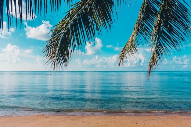 Piękna plenerowa tropikalna plaża i morze w rajskiej wyspie Darmowe Zdjęcia