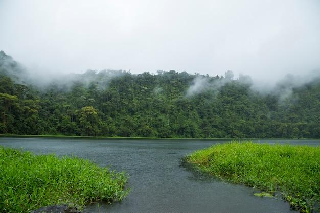 Piękna rzeka w tropikalnym tropikalnym lesie deszczowym przy costa rica Darmowe Zdjęcia