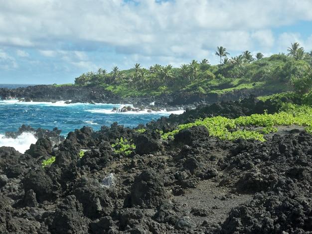 Piękna Sceneria Ostrych Formacji Skalnych Na Plaży Pod Pochmurnym Niebem Na Hawajach Darmowe Zdjęcia