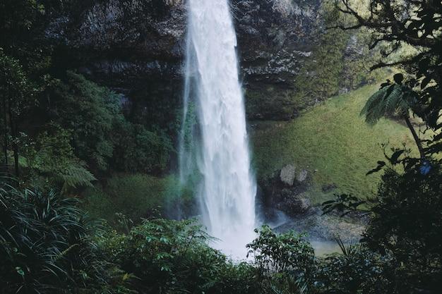 Piękna Sceneria Potężnego Wodospadu W Lesie Otoczonym Zielenią Darmowe Zdjęcia