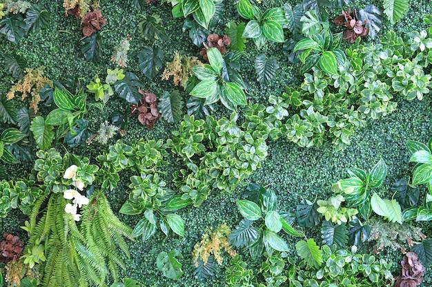 Piękna ściana Sztuczny Kwiat I Liście Dla Dekoraci. Premium Zdjęcia