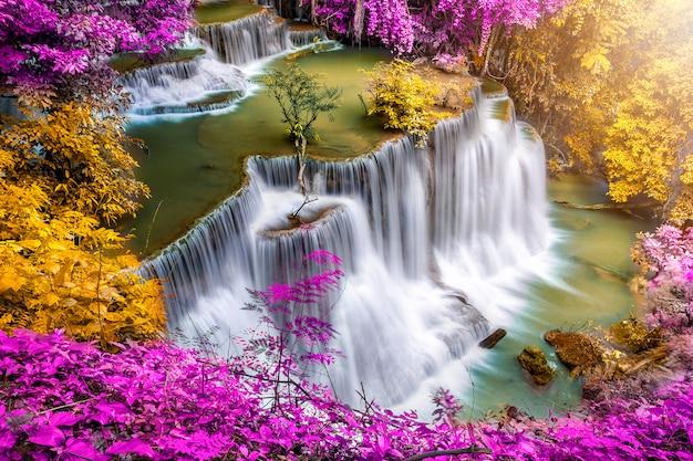 Piękna Siklawa Natury Sceneria Kolorowy Głęboki Las W Letnim Dniu Premium Zdjęcia