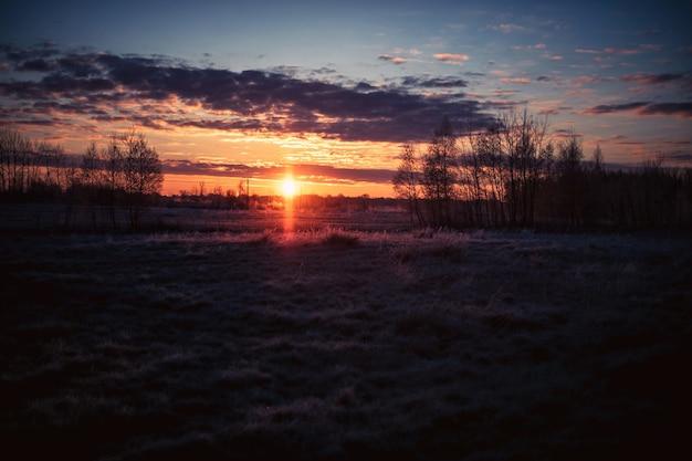 Piękna Trawa Pokryta Pole I Drzewa Pod Zachodem Słońca W Pochmurnym Niebie Darmowe Zdjęcia