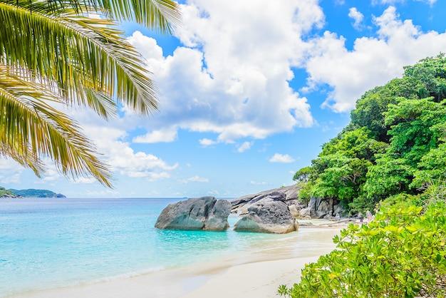 Piękna tropikalna plaża Darmowe Zdjęcia