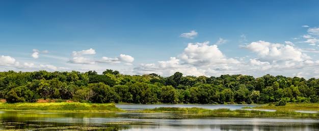 Piękna Wiejska Scena Z Lasem I Stawem Na Tle Błękitnego Nieba Premium Zdjęcia