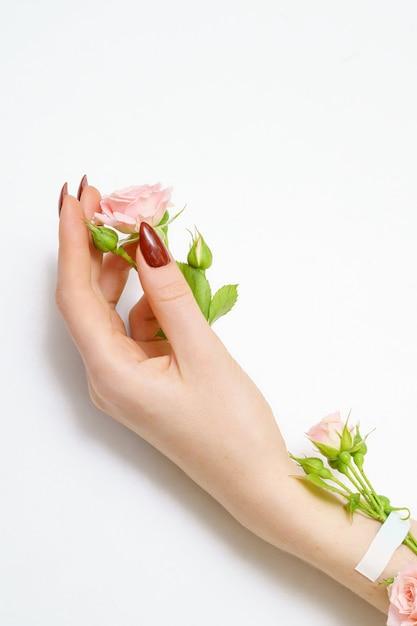 Piękna żeńska Ręka Z Różowymi Różami Na Białym Tle, Premium Zdjęcia