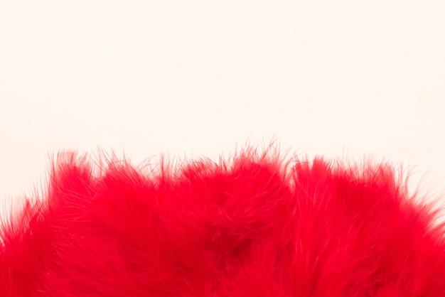 Piękne Czerwone Pióra Na Białym Tle Premium Zdjęcia