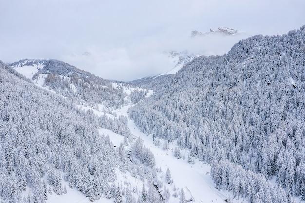 Piękne Drzewa W Zimowy Krajobraz Wczesnym Rankiem W śniegu Darmowe Zdjęcia