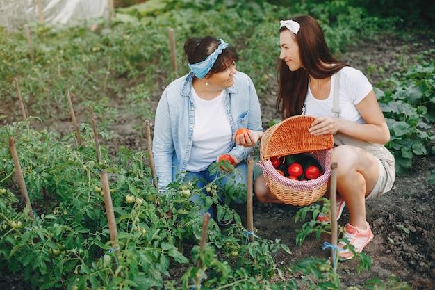Piękne kobiety pracują w ogrodzie Darmowe Zdjęcia