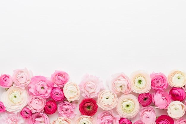 Piękne Kolorowe Kwiaty Jaskier Na Białym Tle. Wiosna Z życzeniami. Premium Zdjęcia
