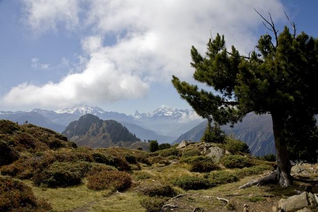 Piękne Krajobrazy Szlaku W Alpach Szwajcarii Pod Zachmurzonym Niebem Darmowe Zdjęcia
