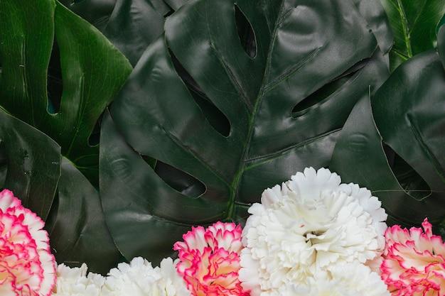 Piękne Kwiaty Goździków I Tropikalne Liście Darmowe Zdjęcia