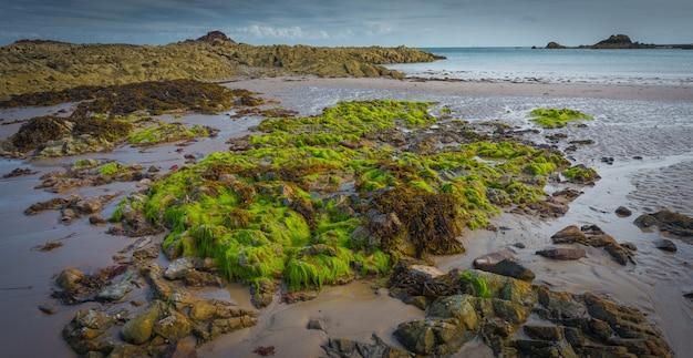 Piękne Panoramiczne Ujęcie Krajobrazu Omszałych Skał Na Spokojnym Morzu Darmowe Zdjęcia