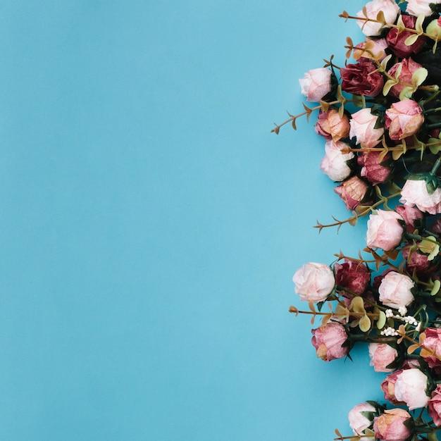 Piękne róże na niebieskim podziemiu Darmowe Zdjęcia