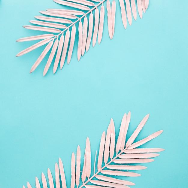Piękne różowe liście na jasnoniebieskim tle z copyspace Darmowe Zdjęcia