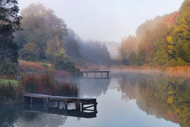 Piękne Ujęcie Jeziora Otoczonego Drzewami, Nad Którym Tworzy Się Mgła Darmowe Zdjęcia