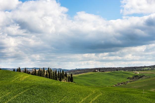 Piękne Ujęcie Trawiastych Wzgórz Z Zielenią Pod Pochmurnym Niebem Darmowe Zdjęcia