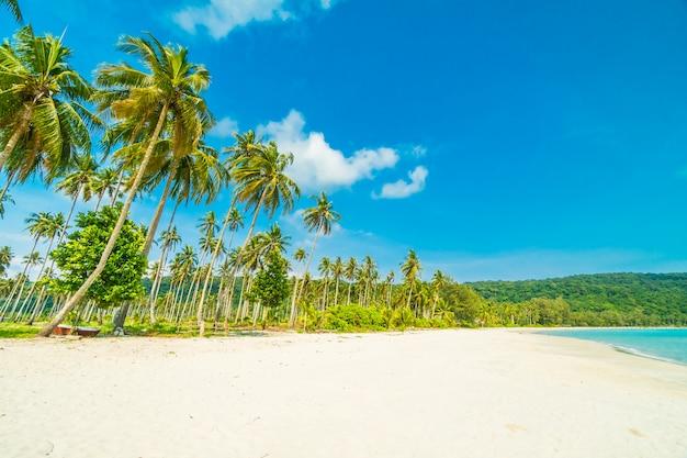 Pięknej przyrody tropikalnej plaży Darmowe Zdjęcia