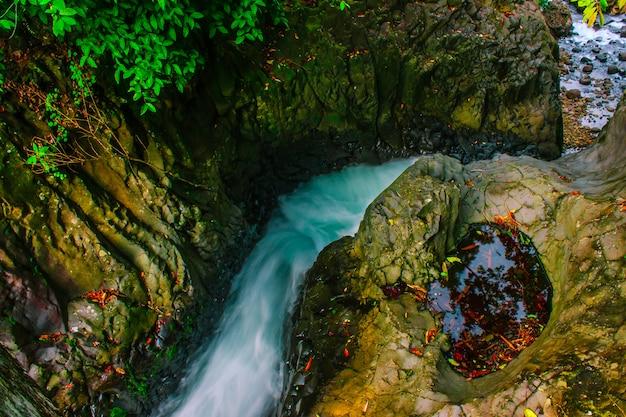 Piękno Wodospad W Zielonym Lesie Indonezja Premium Zdjęcia