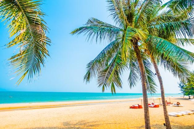 Piękny drzewko palmowe na plaży Darmowe Zdjęcia