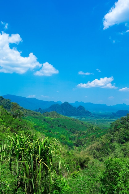 Piękny Górski Krajobraz Z Pochmurnego Nieba Premium Zdjęcia